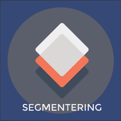 Segmentering - Bech Distribution A/S